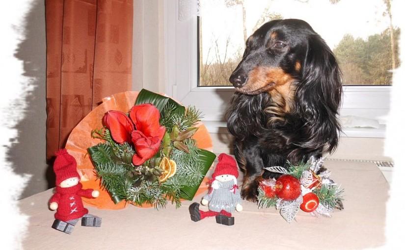 Frohe Weihnachten und ein glückliches und gesundes neues Jahr!