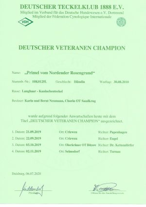 Veteranenchampion DTK-